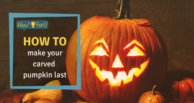 How to make your carved pumpkin last longer